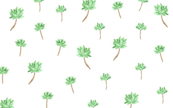 Succulents Desktop